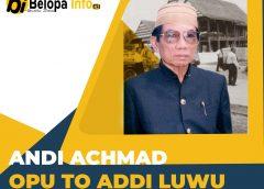Pejuang itu Bernama Andi Achmad